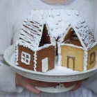 Sausaininiai kalėdiniai nameliai