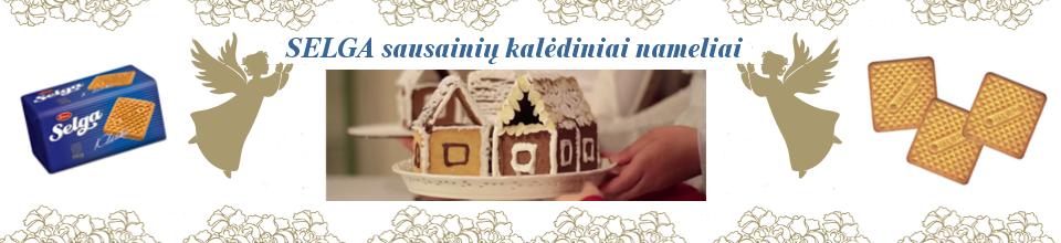 SELGA sausainių kalėdiniai nameliai